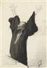 Honoré Daumier, L'AVOCAT PATHÉTIQUE