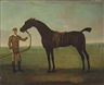 Thomas Spencer, Fearnought with jockey, probably Match'em Timms, at Newmarket, Saint Mary's church beyond