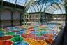 Daniel Buren - BALTIC Centre for Contemporary Art