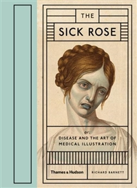 criticism of the sick rose Free coursework on criticism of the sick rose from essayukcom, the uk essays company for essay, dissertation and coursework writing.