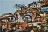 JR, Favela Tree of Providencia