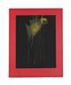 Helen Frankenthaler, Ramblas