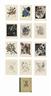 Wassily Kandinsky, Kleine Welten