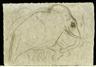 Diego Rivera, elephant