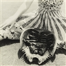 Francesca Woodman, UNTITLED (HORSESHOE CRAB, PROVIDENCE)
