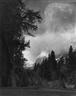 Ansel Adams: Classic Images - Robert Mann Gallery