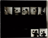 Francesca Woodman, Untitled (Contact sheet)