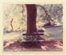 Luigi Ghirri, Ravenna - dalla serie Un piede nell'Eden