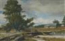 Odgen M. Pleissner, Vermont