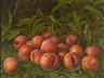 Levi Prentice, Peaches