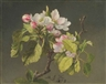 Martin Johnson Heade, A Branch of Apple Blossoms and Buds
