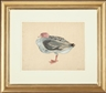 Morris Graves, Bird, No. 845
