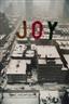 Tim Hailand, Joy