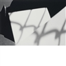 Ray Metzker, Pictus Interruptus: Wall and pavement,  80 FP-4