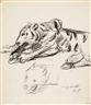 Lovis Corinth, 2 works ;Leoparden-Studie (verso Löwen-Studie) and Weiblicher Akt