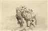 Max Slevogt, Zwei Kamelreiter