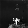 Roger Ballen, Puppy on table