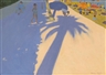 Andrew Macara, Tree Shadow at San Bartolemeo, Italy