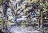 Patric Stevenson, Trees in Winter