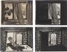 Howard Hodgkin, Four works: In the Museum of Modern Art
