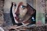 Esko Männikkö: Time Flies - Yancey Richardson Gallery