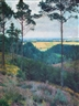 Friedrich Ahlers-Hestermann, View from the Woods