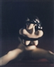 David Levinthal, UNTITLED FROM DESIRE