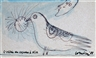Corneille, L'oiseau