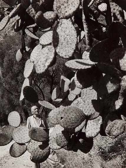 Robert doisneau blaise cendrars dans son jardin for Bruler dans son jardin