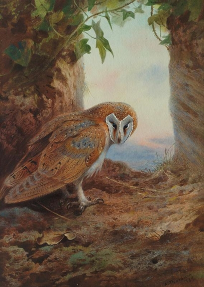 an analysis of grey owl a result of stereotypes There is no better summary description of riding mountain one of the mysteries  of grey owl is that a half-breed boy raised by ojibways could have composed it.