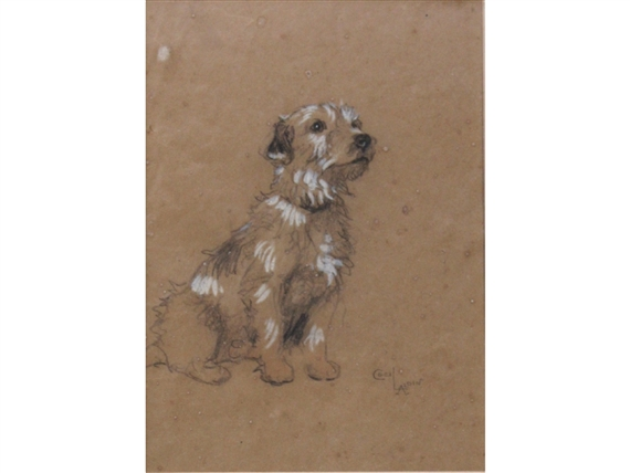 Artwork By Cecil Aldin A SEALYHAM TERRIER BUNCH EAGER AS EVER