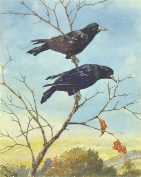 Image result for crows on a branch